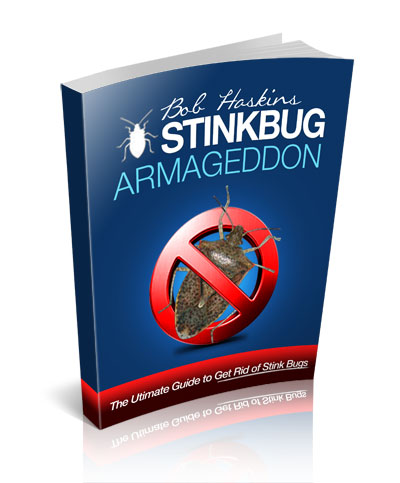 Stink Bug Armageddon: The Ultimate Guide to Get Rid of Stink Bugs